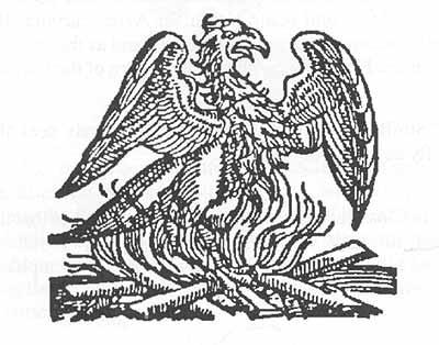 phoenix_bird_fire2.jpg